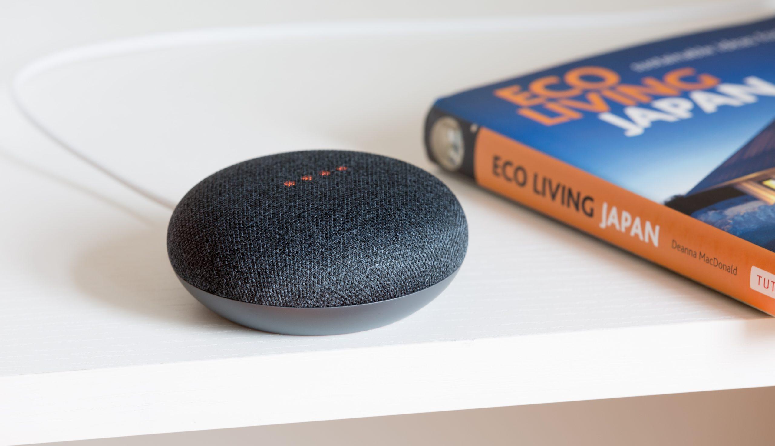 Google Smart Speaker Home